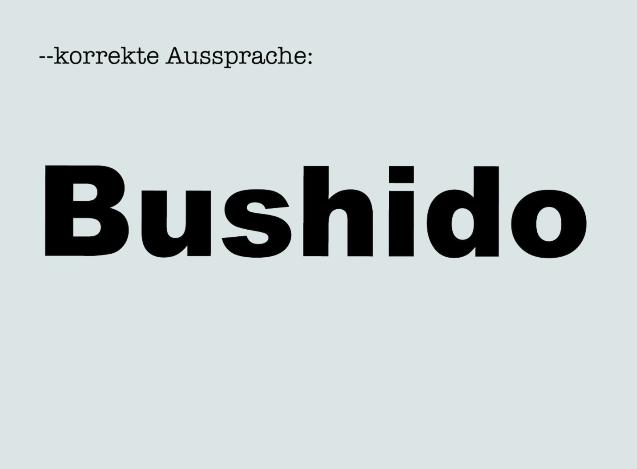 Deutschrap korrekte Aussprache (Screenshot)