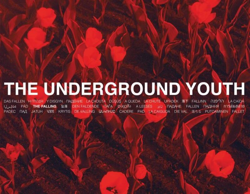 The Underground Youth - The Falling (Albumcover)